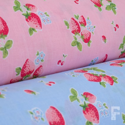 Strawberries on Coloured Background